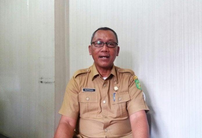 Kabid Taman dan Peneramgan Dinas Kebersihan dan Pertamanan Kota Medan, Supriadi.