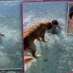 Seorang influencer media sosial, Jason Clark @jasontodolist, hampir mati tenggelam setelah terjebak di bawah es saat syuting untuk akun TikTok-nya.