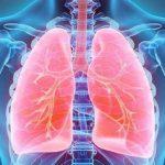 Begini Tujuh Cara Membersihkan Paru-paru