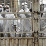 Singapura Larang Masuk Warga Korsel, Iran dan Italia