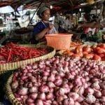 Kata Pemerintah Stok Pangan Aman, Pedagang Bilang Harganya Kemahalan