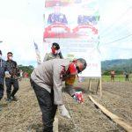 Polda Sumut tabur 450 kg bibit jagung di Desa Garoga, Kec Simanindo, Kab Samosir, Kamis (4/6/2020).