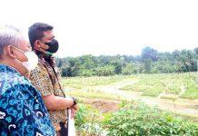 Dalam sepekan terakhir ini, 107 jenazah dikebumikan di Pemakaman Khusus Covid-19 di Simalingkar B, Kecamatan Medan Tuntungan.
