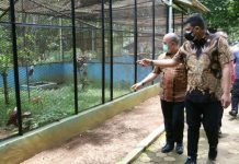 Walikota Medan, Bobby Nasution mengingatkan kepada calon direksi PD Pembangunan nantinya agar bisa mengembangkan potensi yang ada di Kebun binatang guna menarik minat masyarakat untuk berkunjung